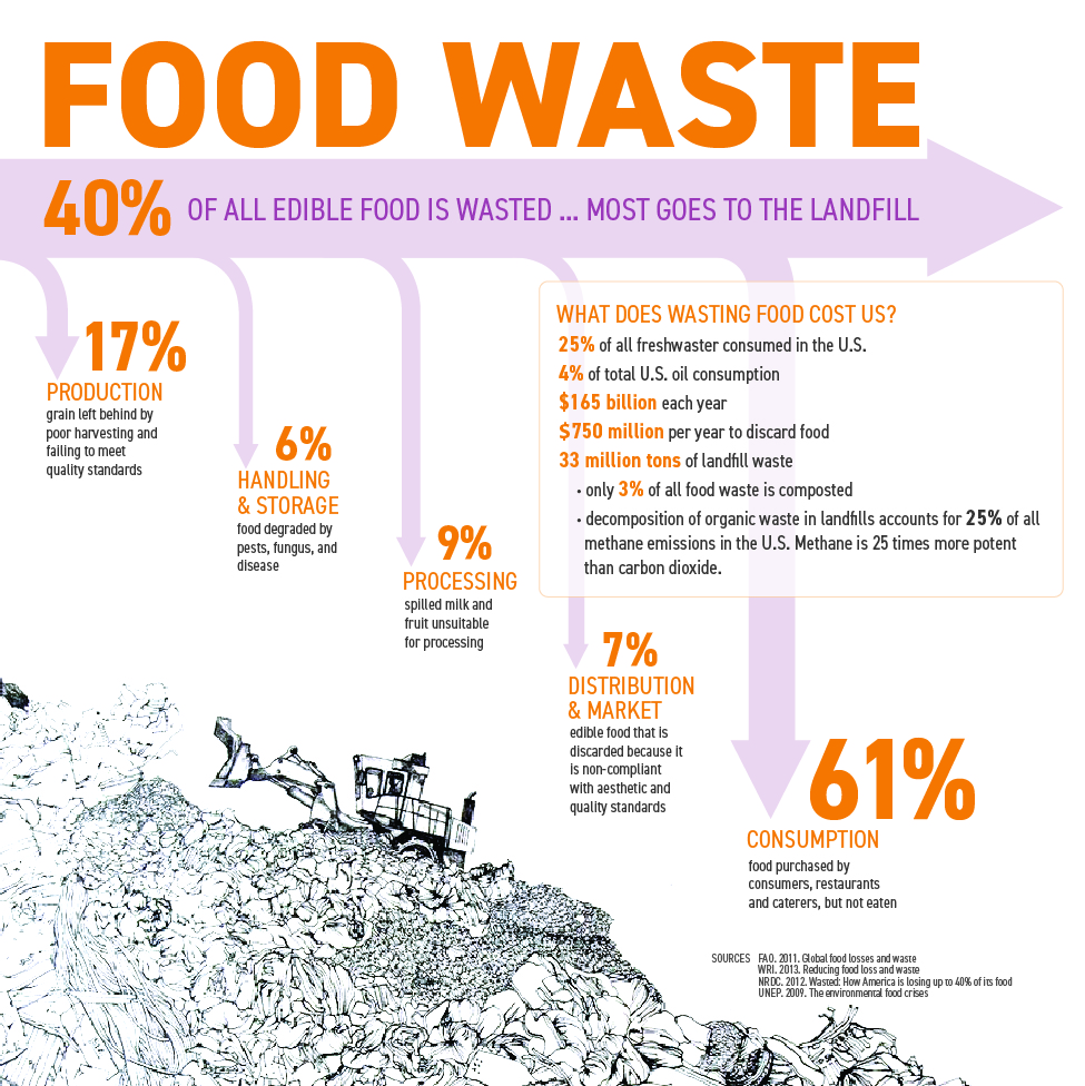 foodwaste-infographicV2-small-01.jpg