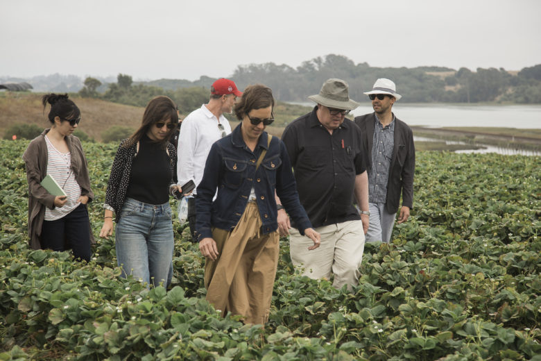 In July 2018 we received a tour of the strawberry fields from members of the Strawberry Commission in Salinas, California. Photo by Vanesa Wright.