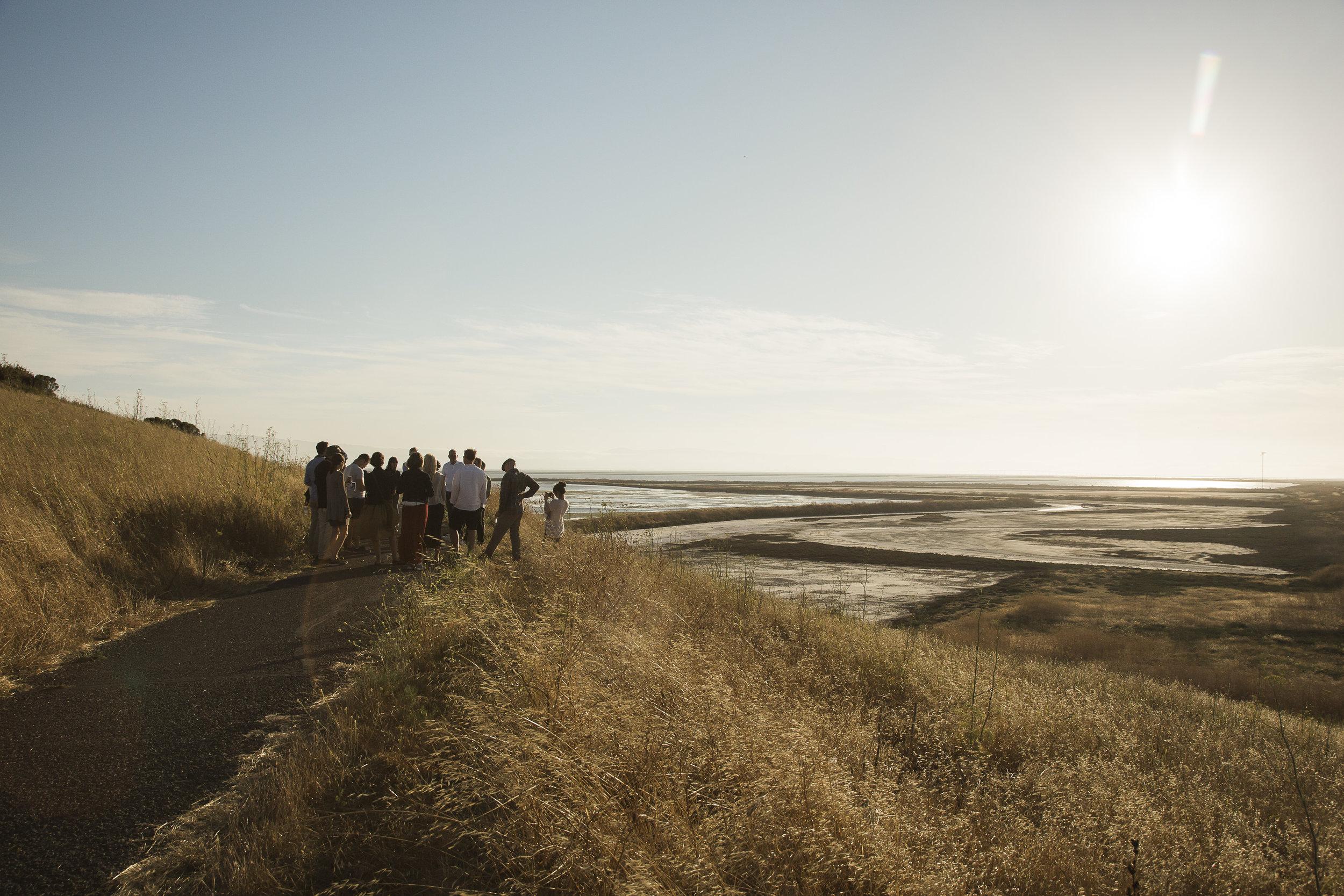 Team Public Sediment giving a tour of the Alameda Creek Eden Landing Ecological Reserve to the Van Alen Institute Climate Council (July 2018).