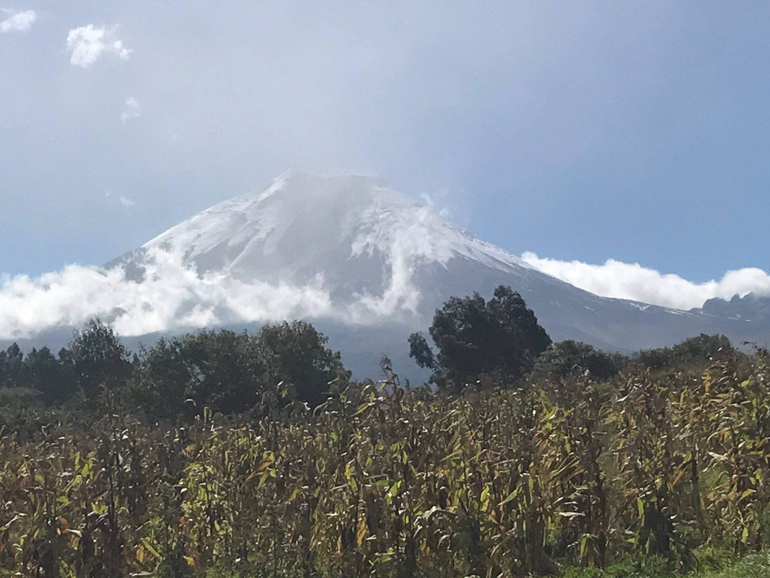Cotapaxi: usually shrouded in clouds