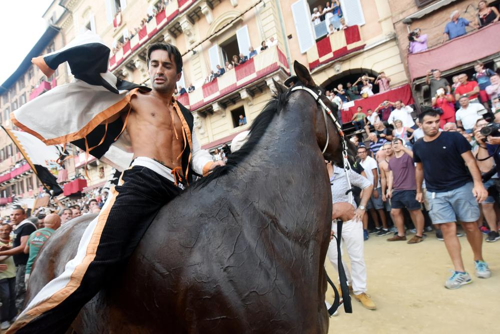 """Jonatan Bartoletti, riding""""Preziosa Penelope"""" to victory in July and August of 2016 for the Lupa (she-wolf) Contrade , The Lupa drew the same horse for both the July and August races and obviously had the same jockey. The last time a Cntrade won both races in the same year was 1933. The picture was taken from The Guardian,  https://www.theguardian.com/artanddesign/ng-interactive/2016/aug/18/palio-di-siena-horse-race-way-of-life-italy-photo-essay"""