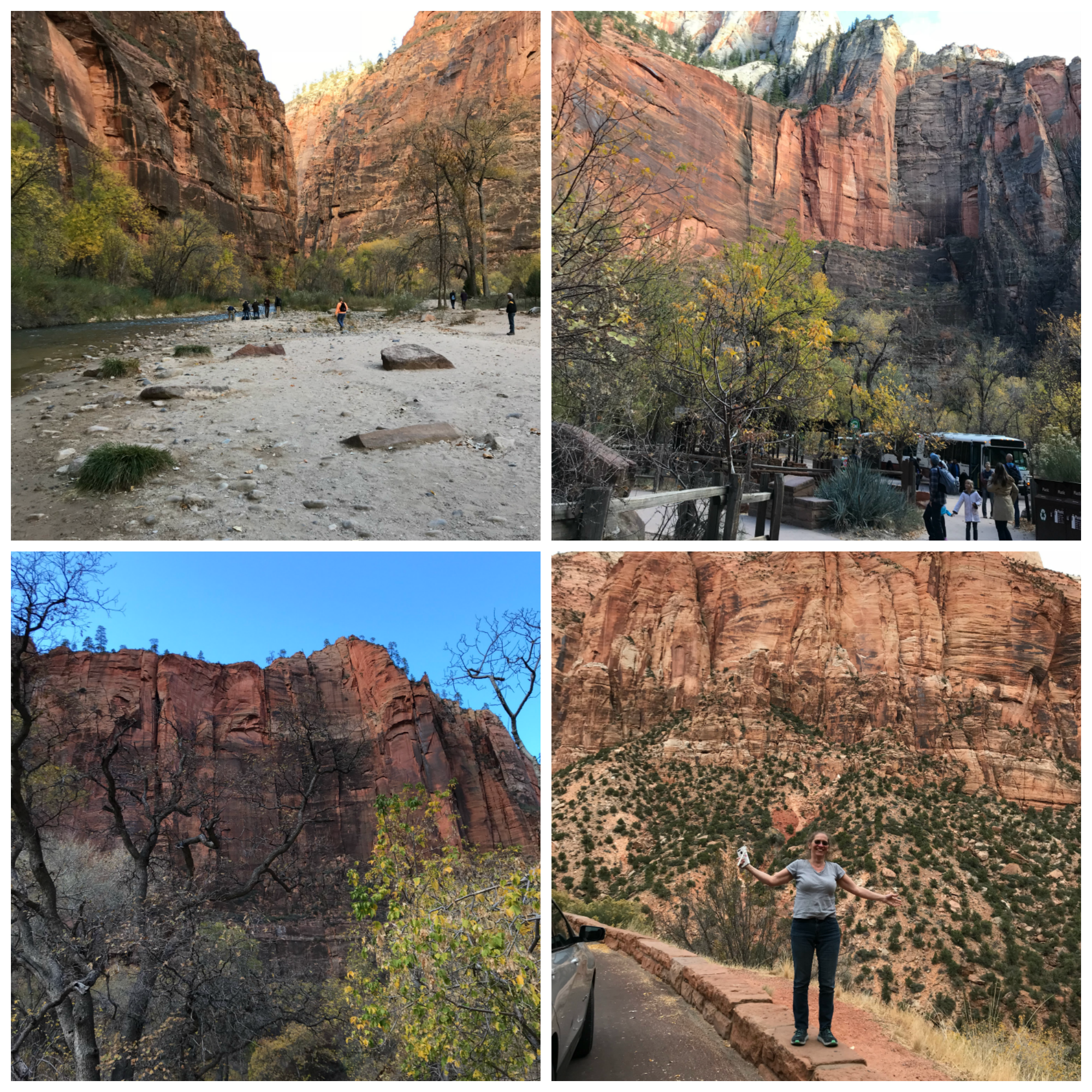 Zion National Park Collage.png