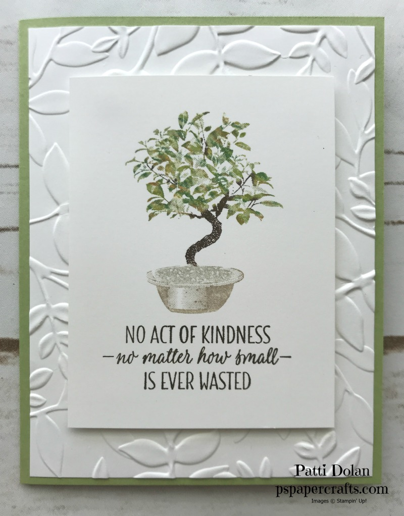 Bonsai Tree Card1.jpg
