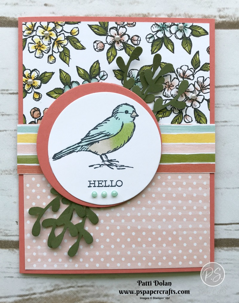 Bird Hello Card3.jpg