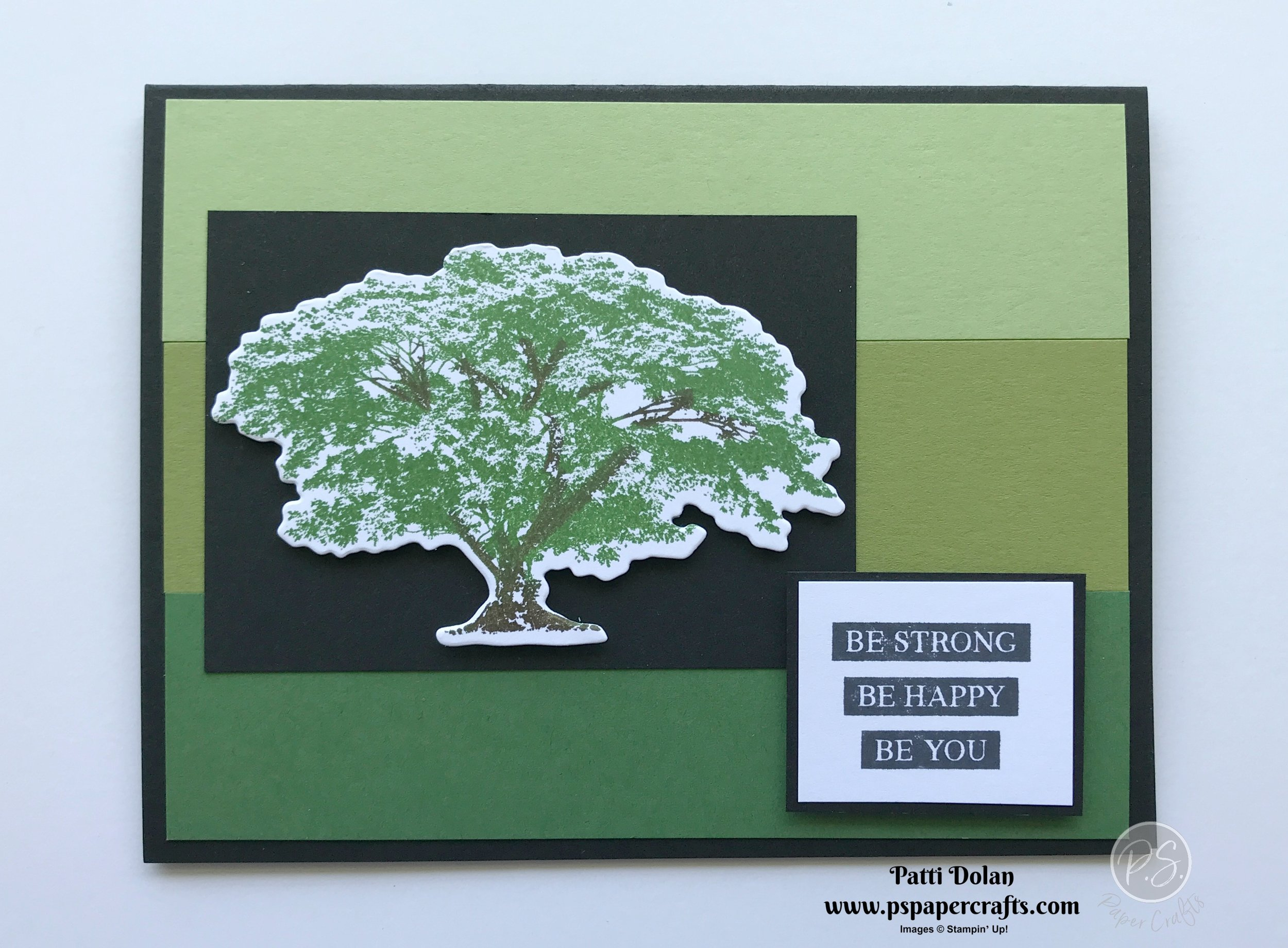 Rooted In Nature Cards.jpg