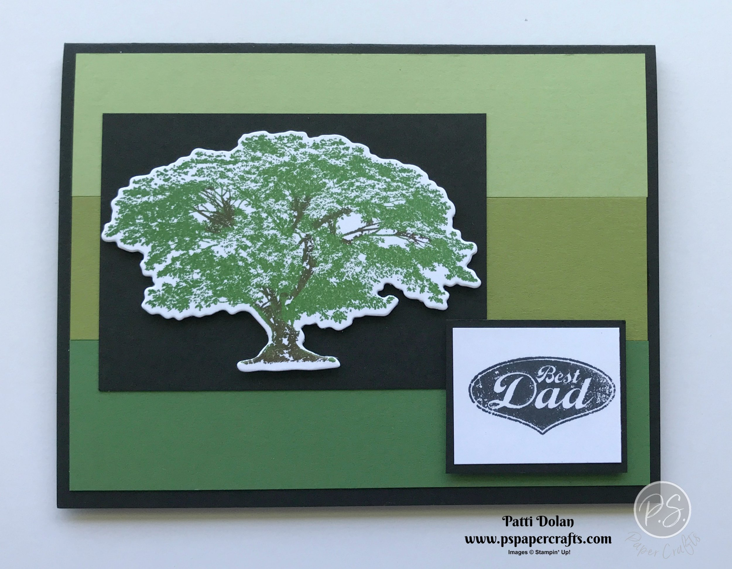 Rooted In Nature Cards3.jpg