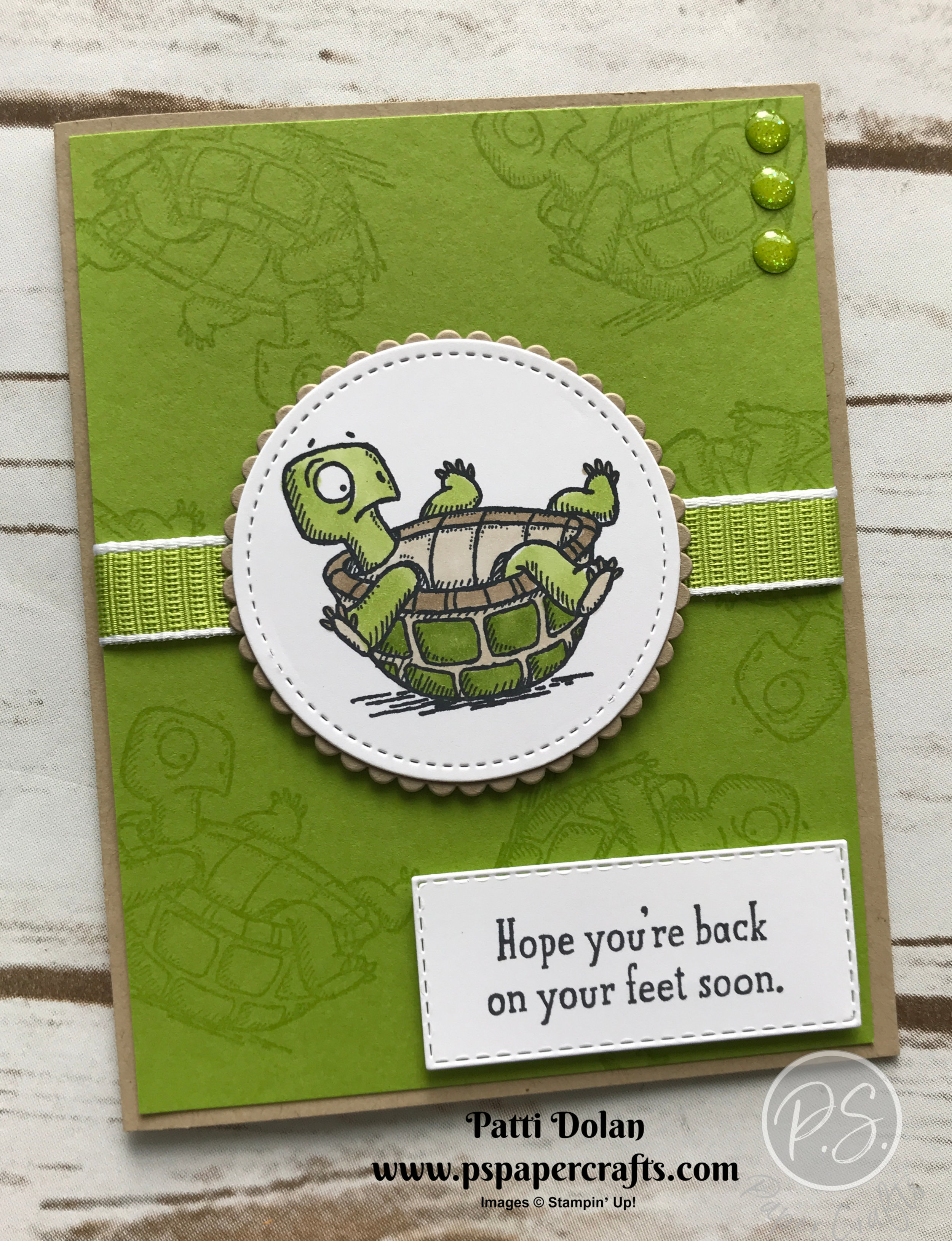 Back On Your Feet Turtle3.jpg