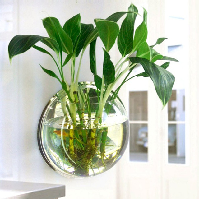 Pot-Plant-Wall-Mounted-Hanging-Aquarium-Transparent-Acrylic-Fish-Bowl-Fish-Tank-Flower-Plant-Vase-Home.jpg_640x640.jpg