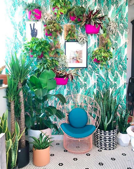 via  Little Leaf Shop