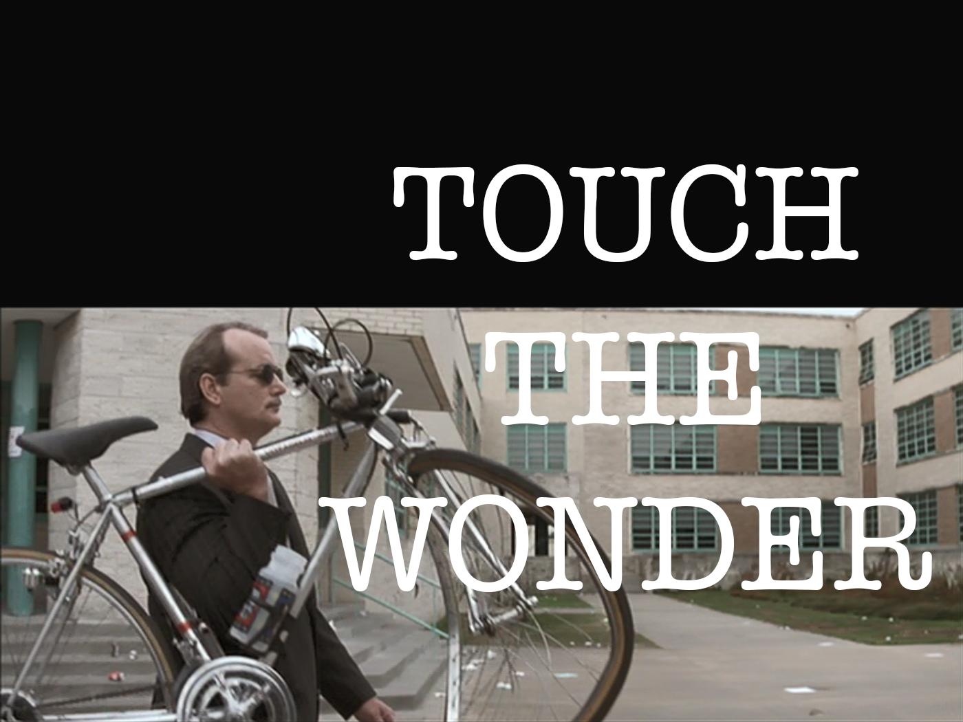 touch wonder bike wolf.jpg