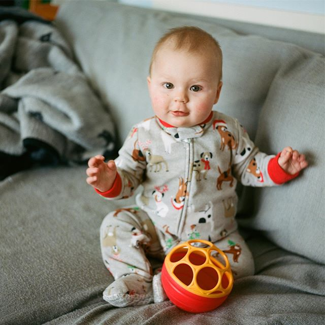 It's hard to believe my happy little goofball turns 1 this month. 🥳 . . . . #rolleiflex #rollei #staybrokeshootfilm #bluemooncamera #heyfsc #ffsfeatureme #c41 #filmphotography #ishootfilm #istillshootfilm #sheshootsfilm #120mm #baby