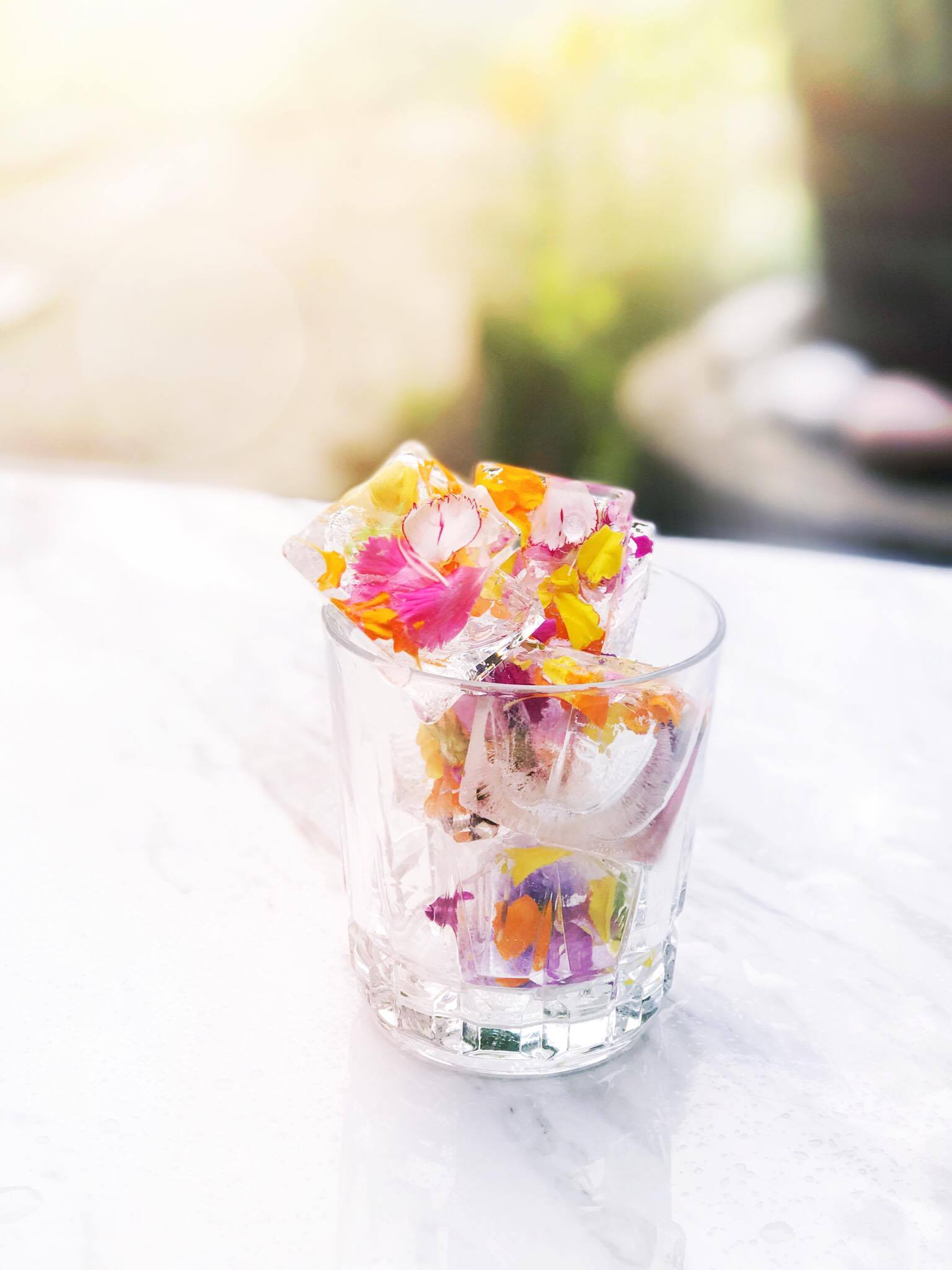 Floral Ice Cubes DIY