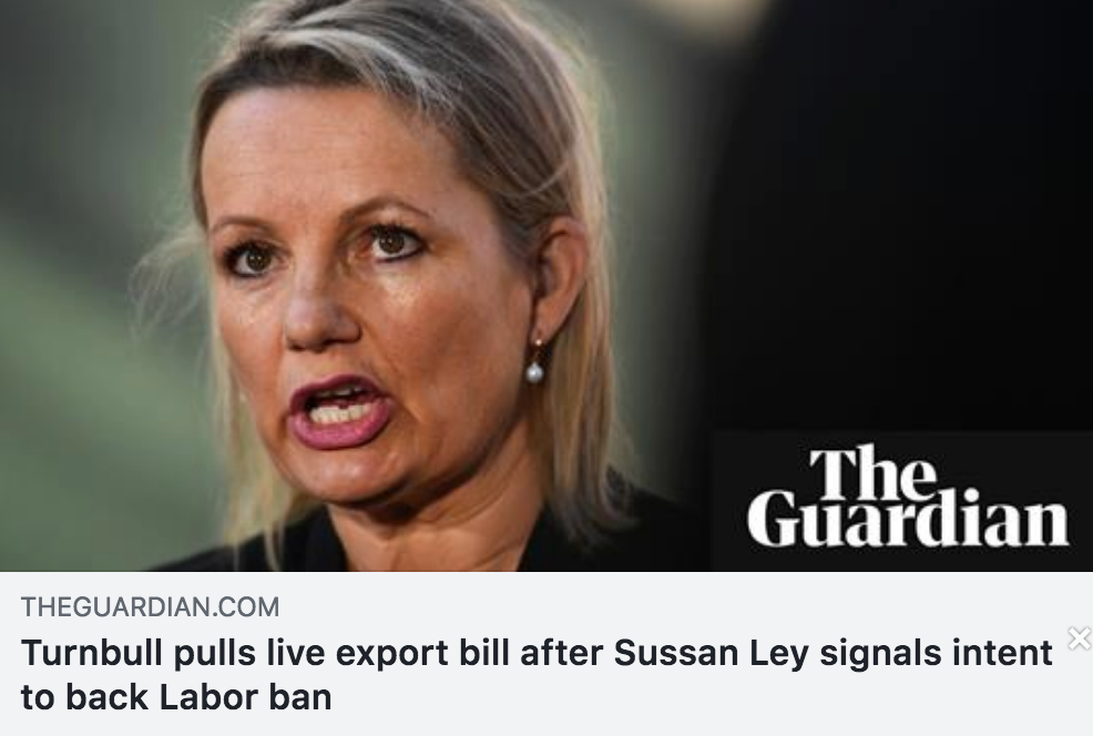 Click on the image for the Guardian article.