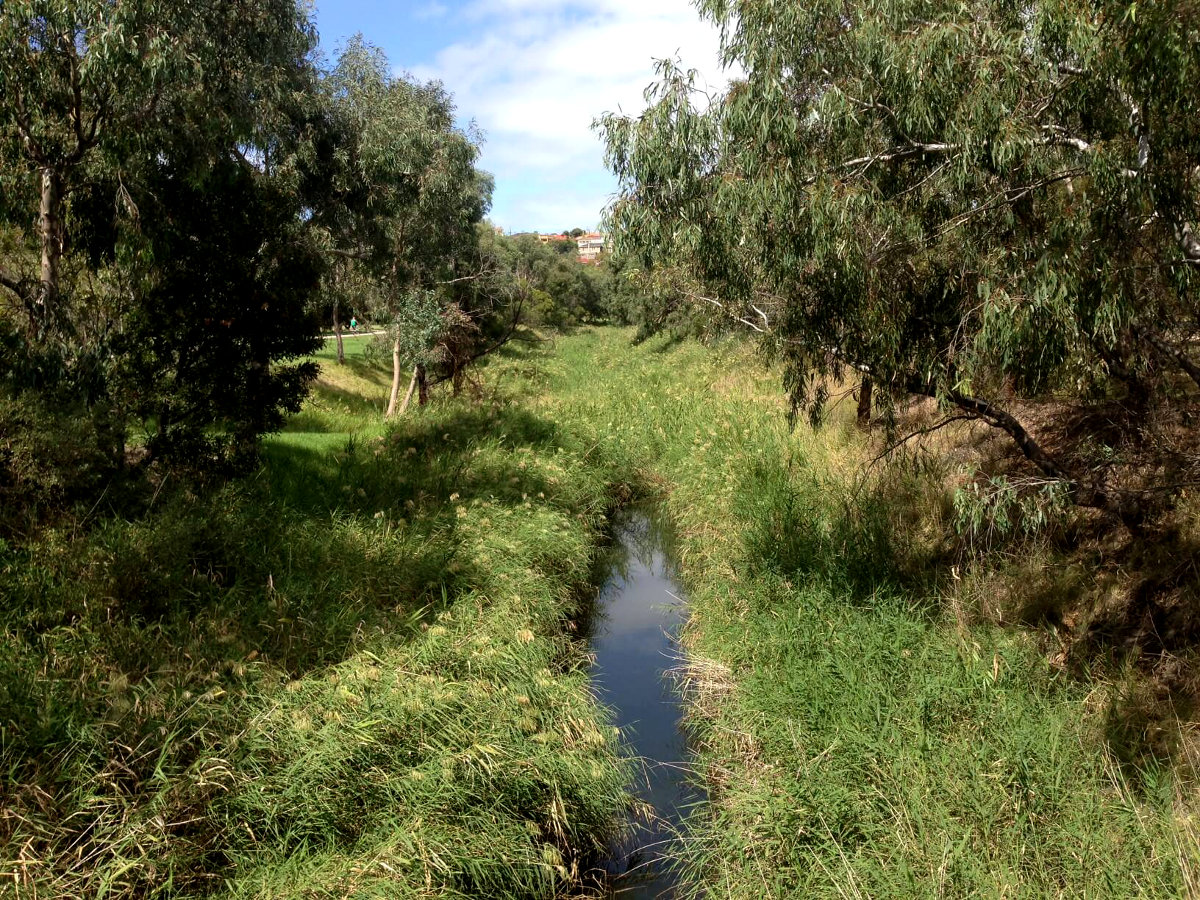 Natural Creek.jpg