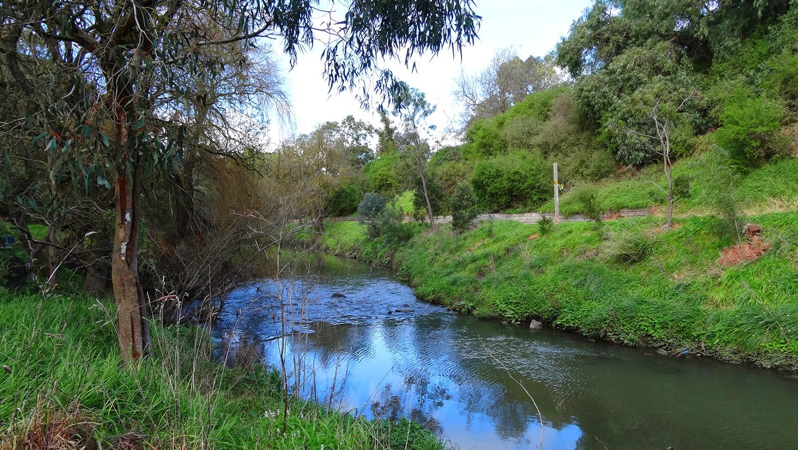 Merri_creek 1.jpg