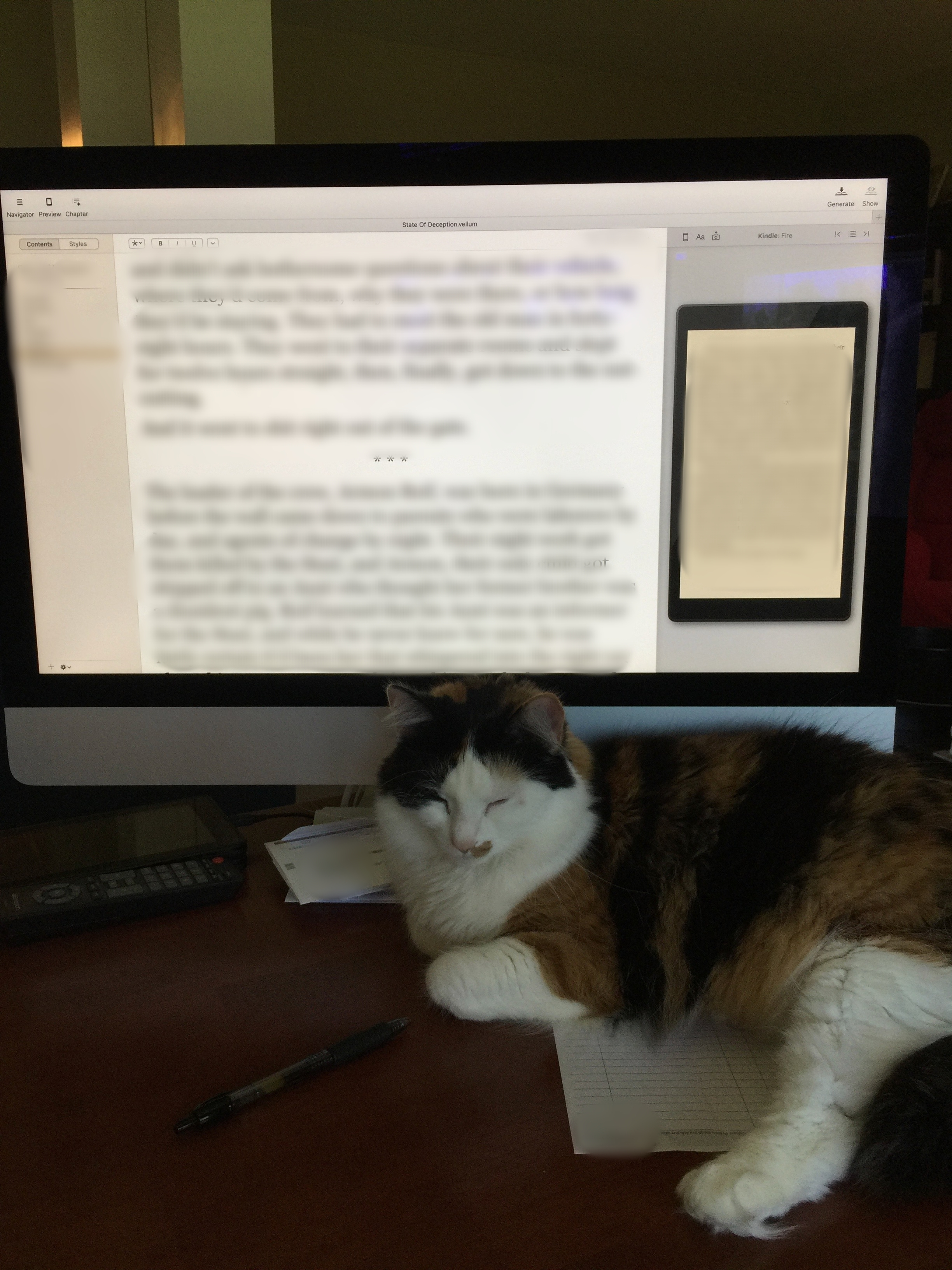 One of my writing buddies, Lucy. (She made me blur the screen) I wanted to let everyone have a peek, but she said, nope...gotta wait!
