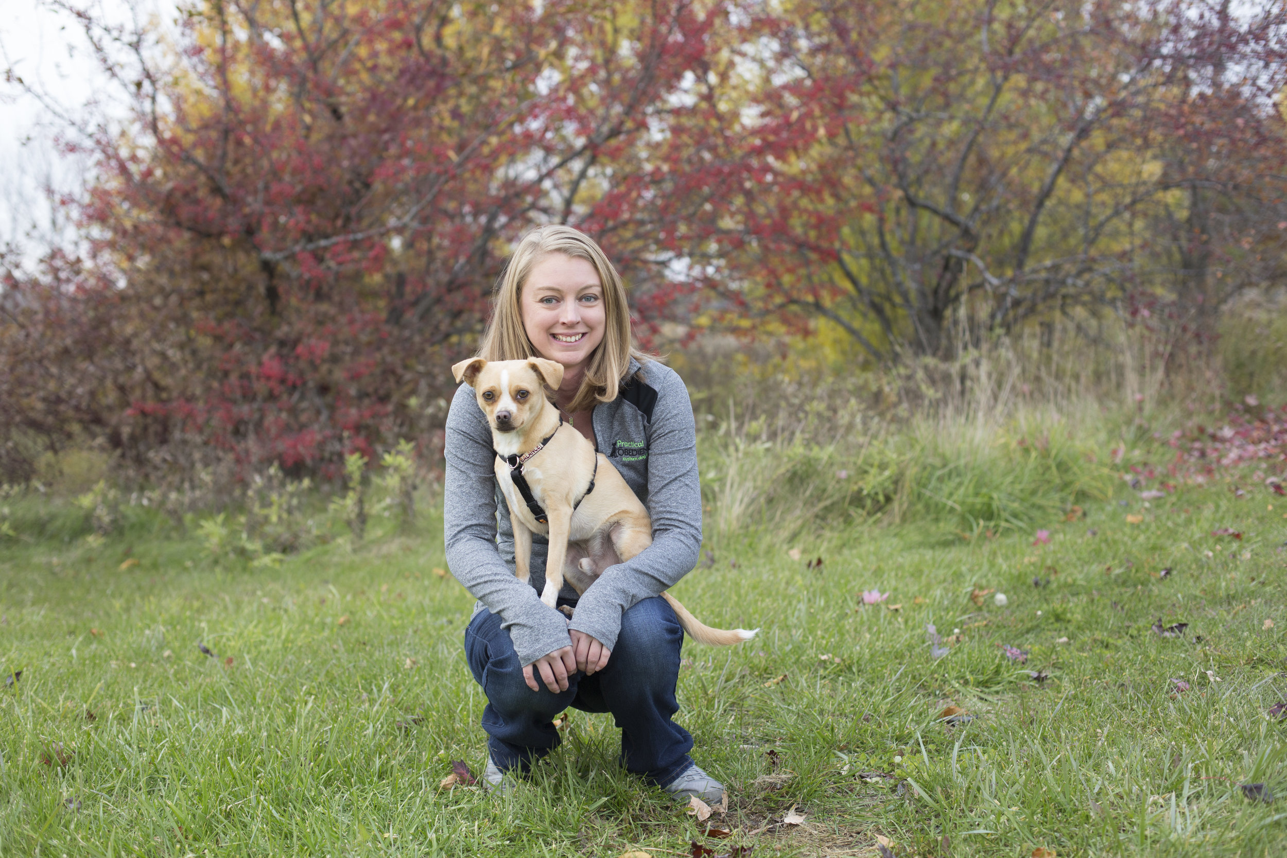 Green Bay Dog and Pet Photographer