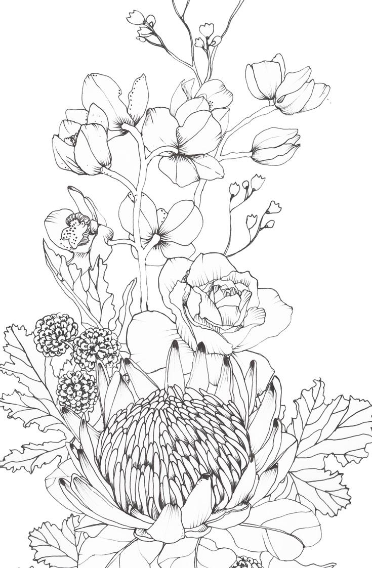 closeup-tattoo-protea-botanical1.jpg