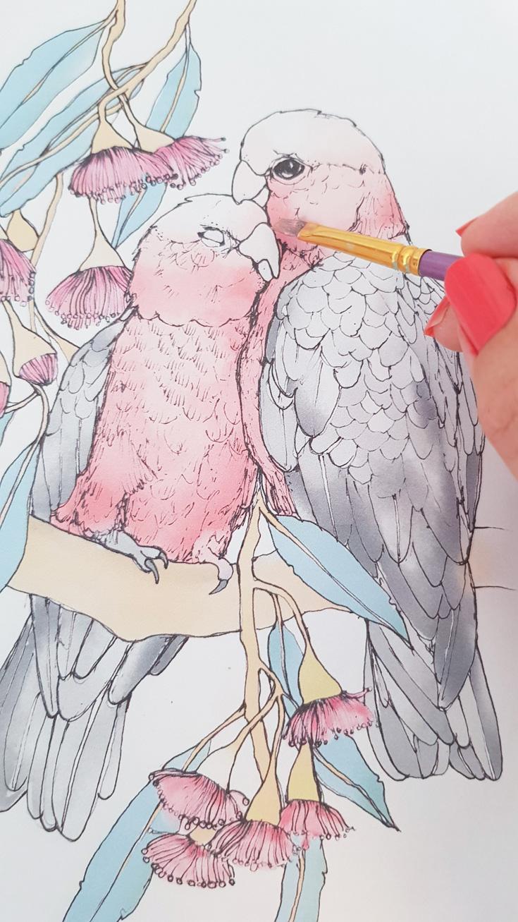 galah-paint-work-in-progress-lovebirds.jpg