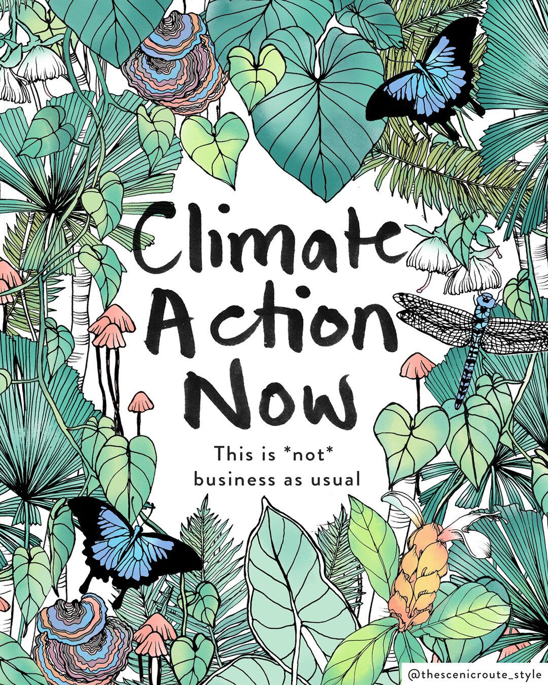 Ciimate Action Now illustration Rainforest