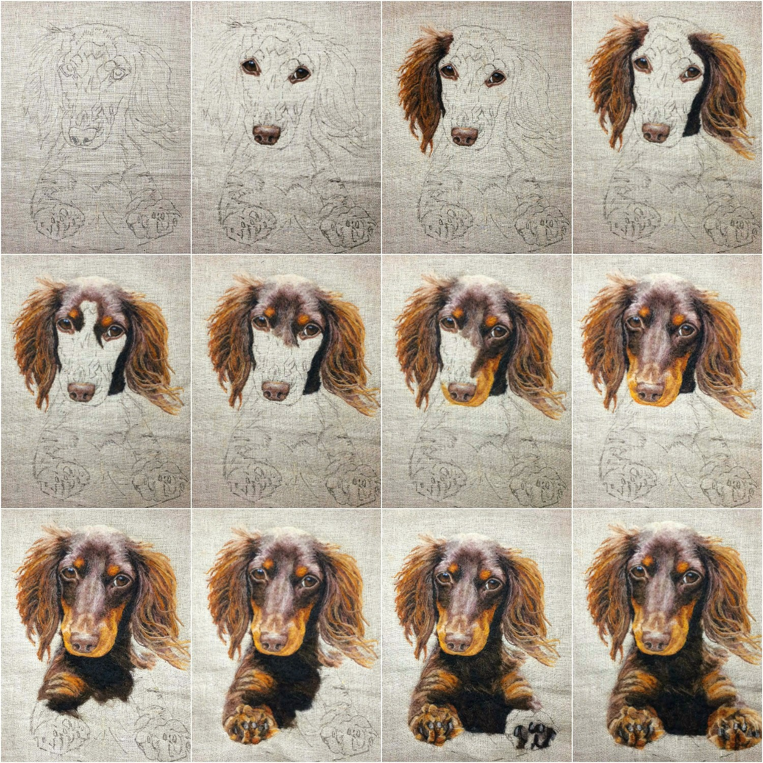 doxie progression collage.jpg