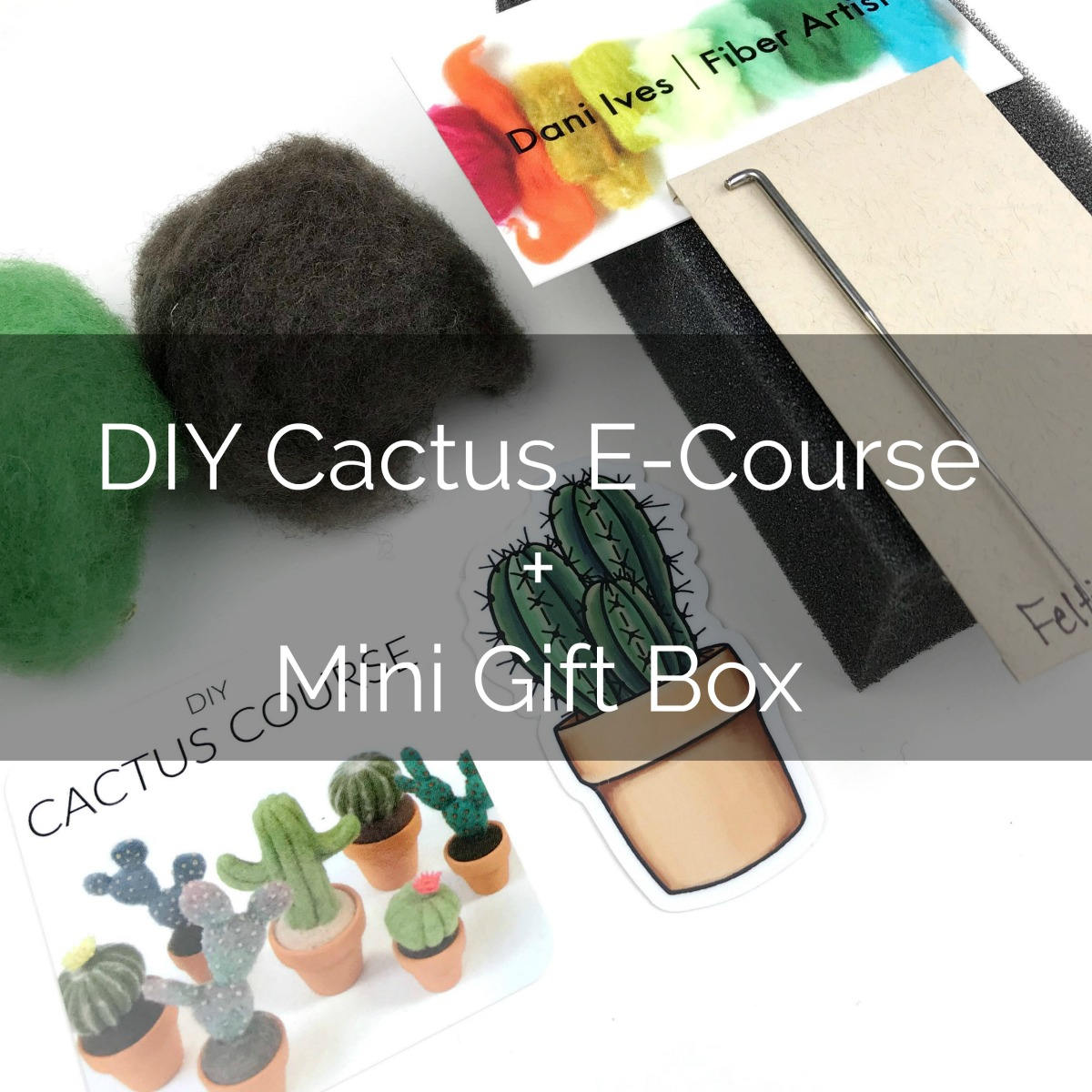 https://www.etsy.com/listing/571285021/diy-cactus-course-gift-card-with-mini?ref=listing-shop-header-0