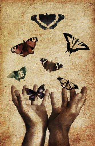 HandsButterflies.JPG