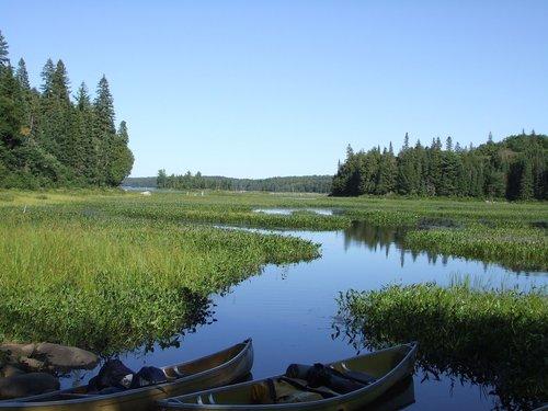DSCF0716 ap river and marsh.jpg