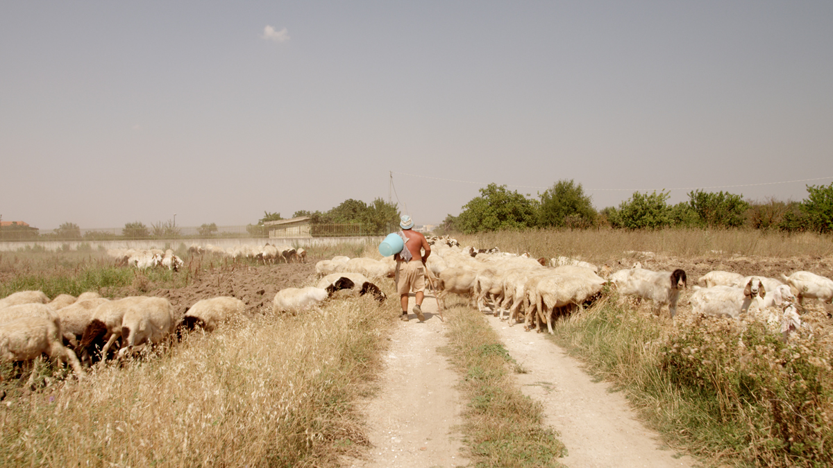 Shepherds in the Cave_FC_shepherds_12.jpg