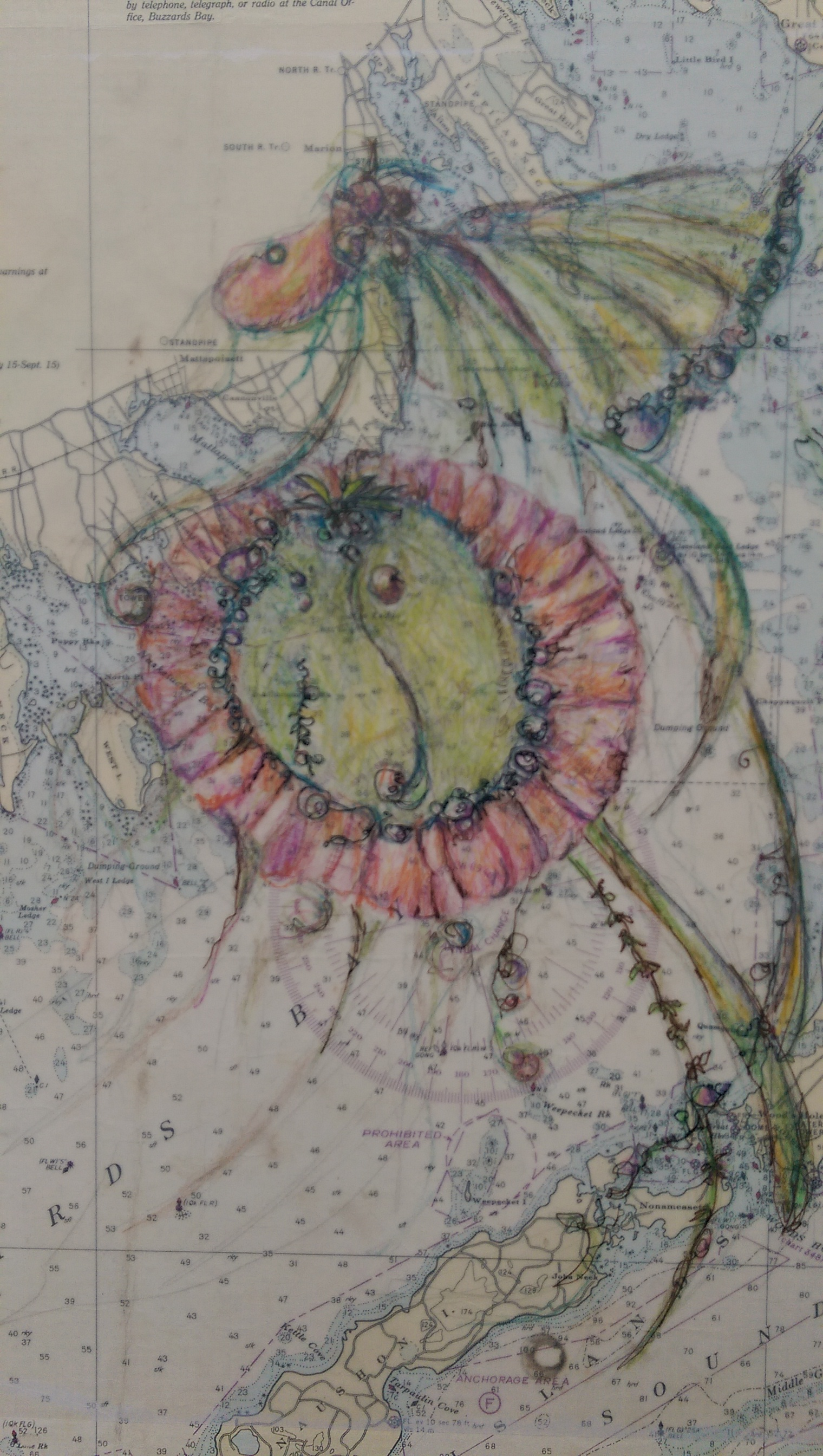 bead map.jpg