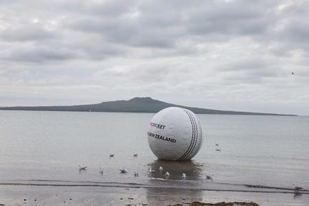cricket ball2.jpg