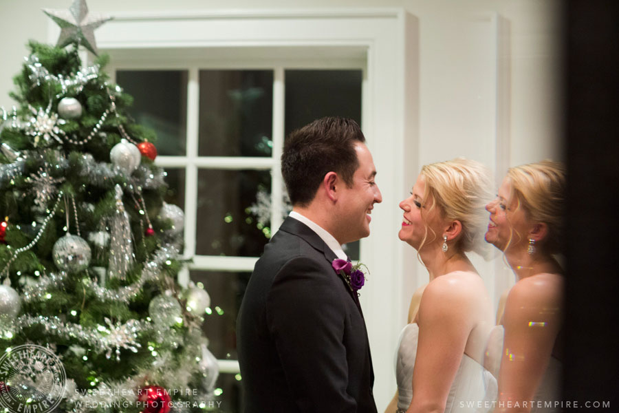 The Doctor's House Christmas Wedding
