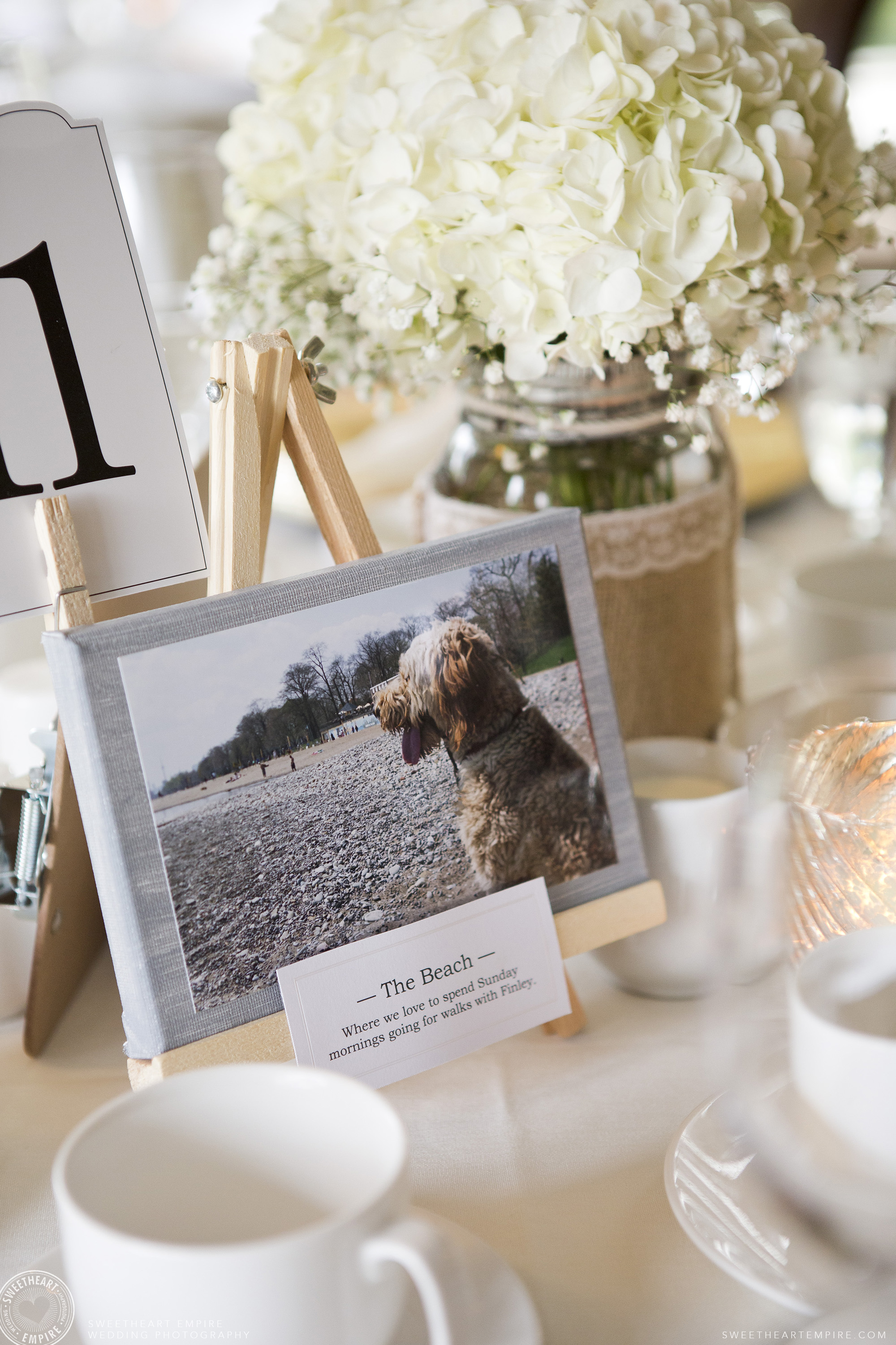 Picture of the bride and groom's dog, Oakville Golf Club Wedding