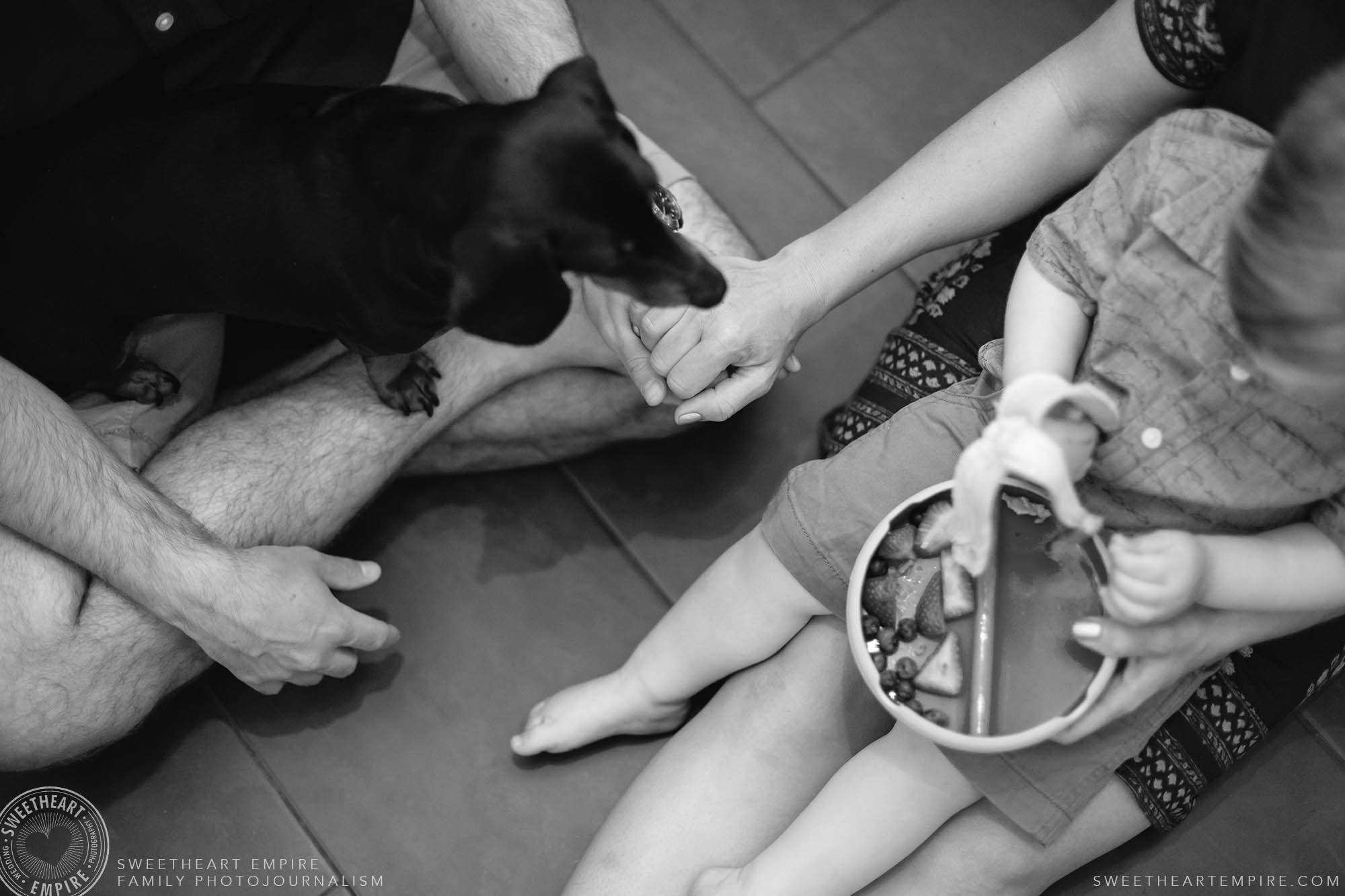11_Parents still holding hands while toddler and dog concentrate on food.jpg