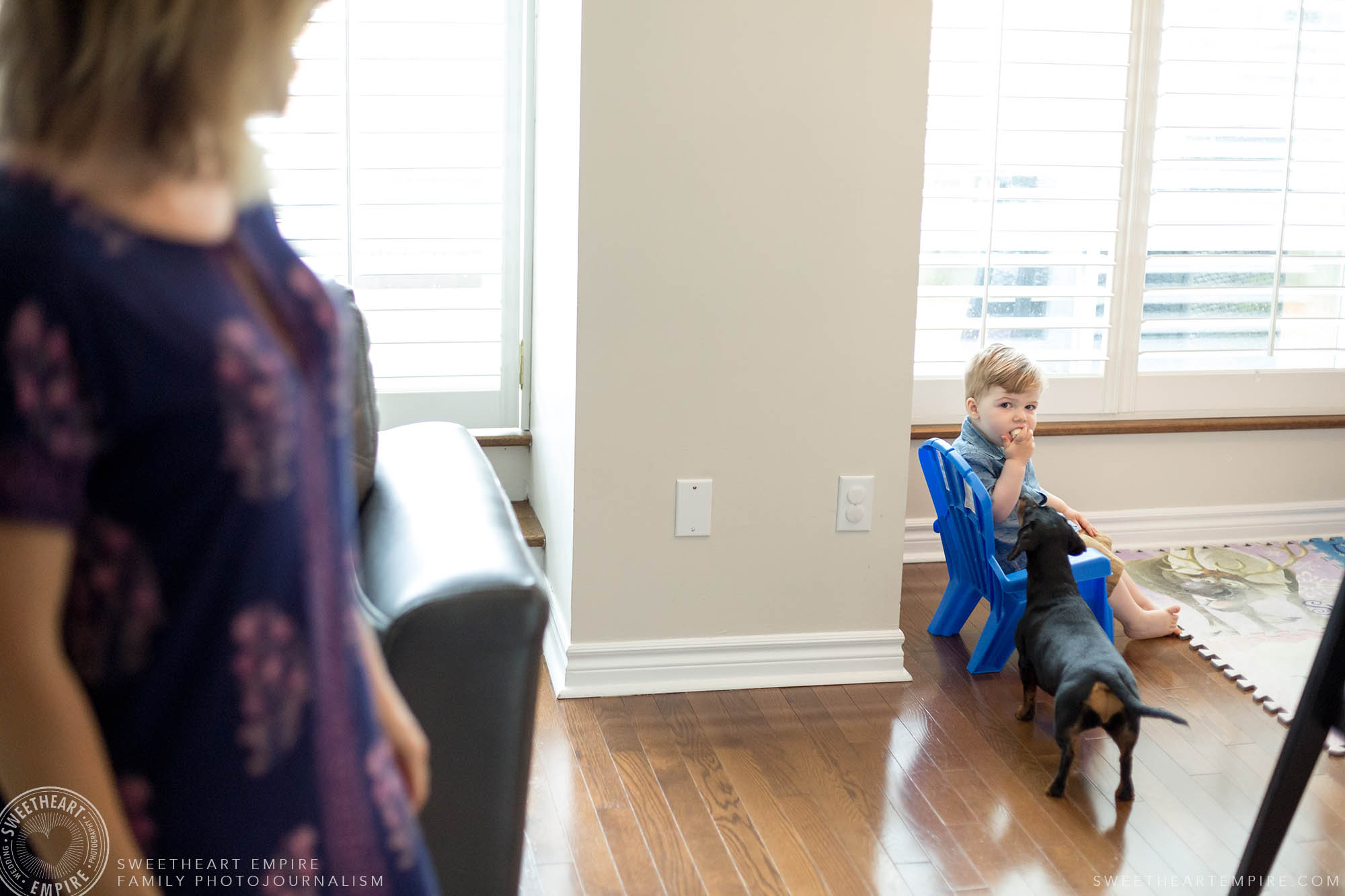 12_Toddler stuffs banana in mouth while dog looks on in interest.jpg
