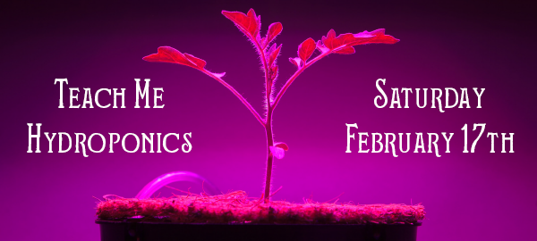hydroponics email.png