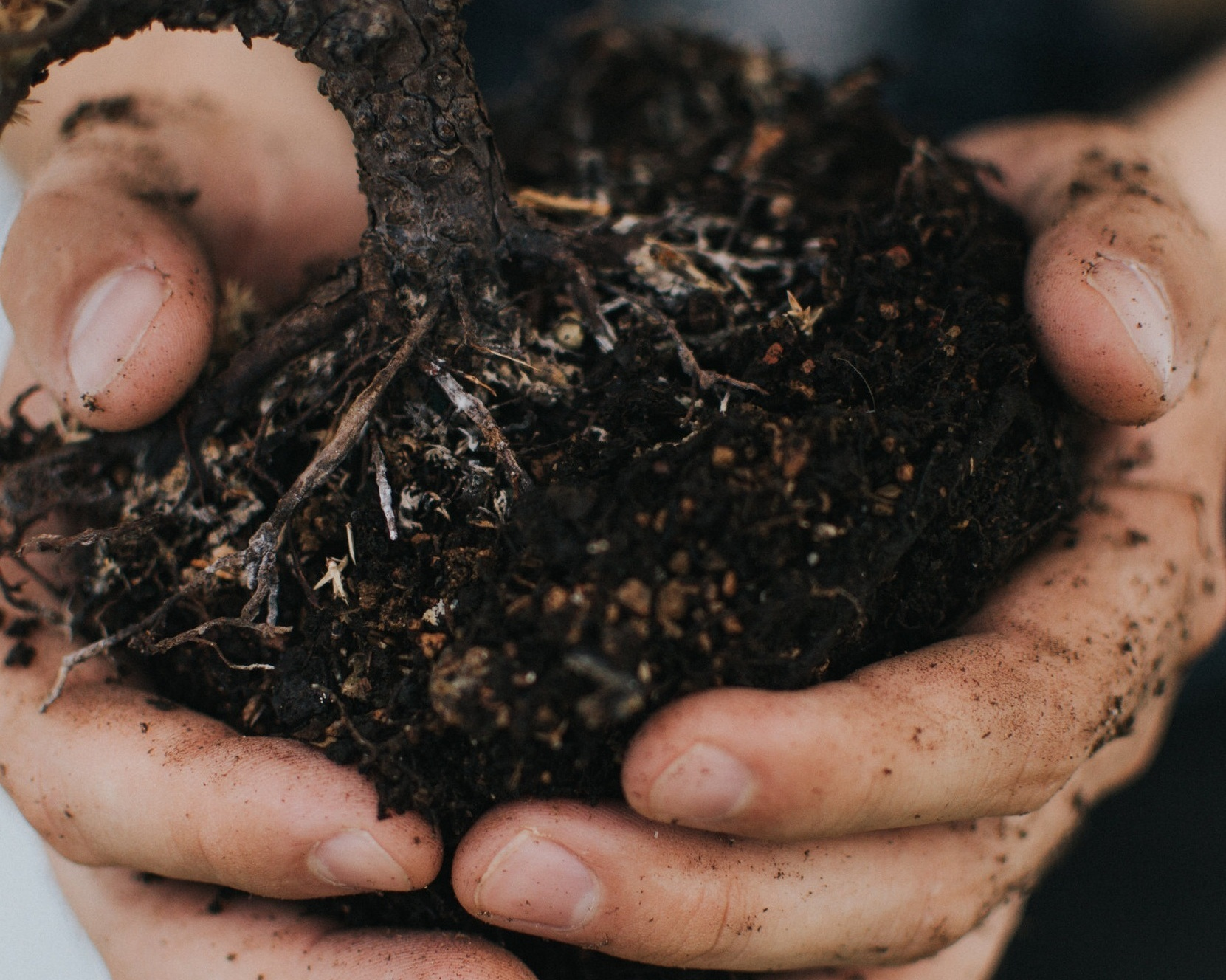 How Much Soil do I Need? - Calculate the quantities you will need in your yard or landscape.