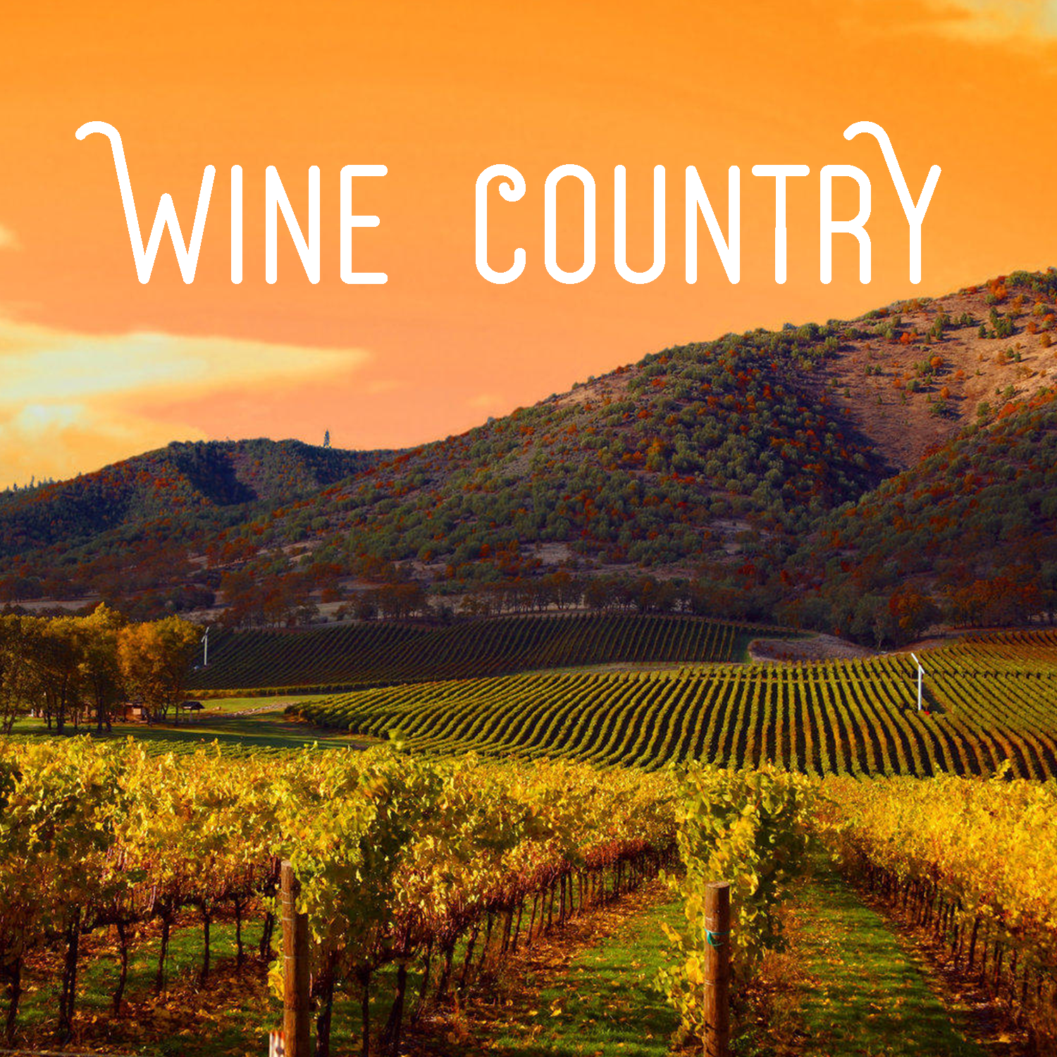 Coming Soon! Napa Valley & Wine Country