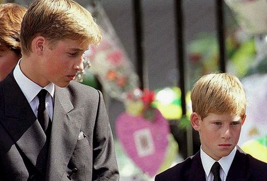 The look from Prince William to his brother in this image says it all. The bond of the boys is strong, even today.  Image source