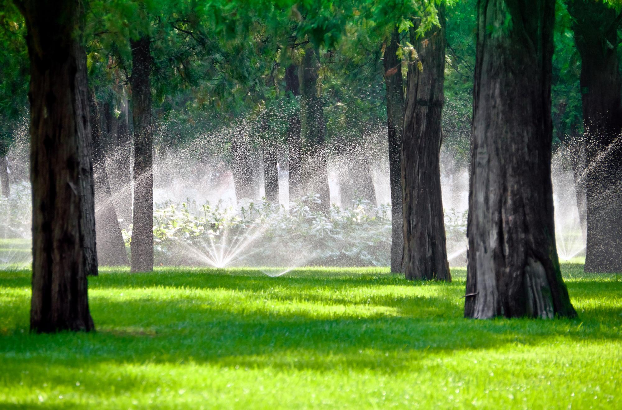 Copy of Sprinkler Repair Company in Lehi, UT