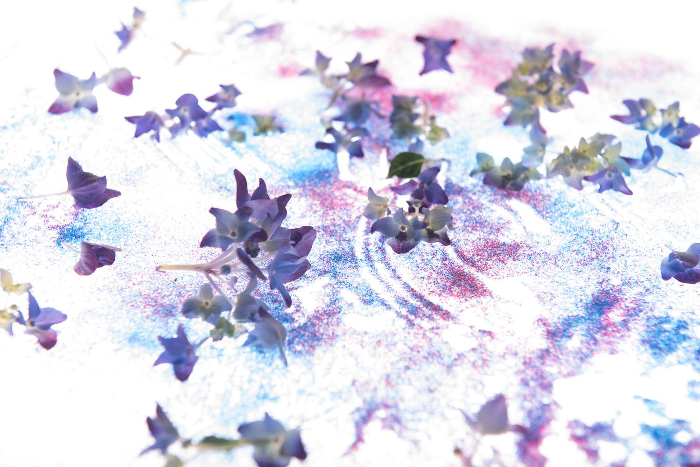 sandy_flowers4.jpg