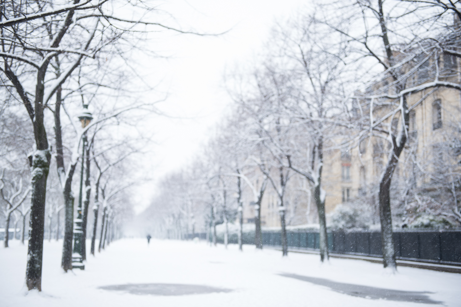Blizzard in Paris - 7