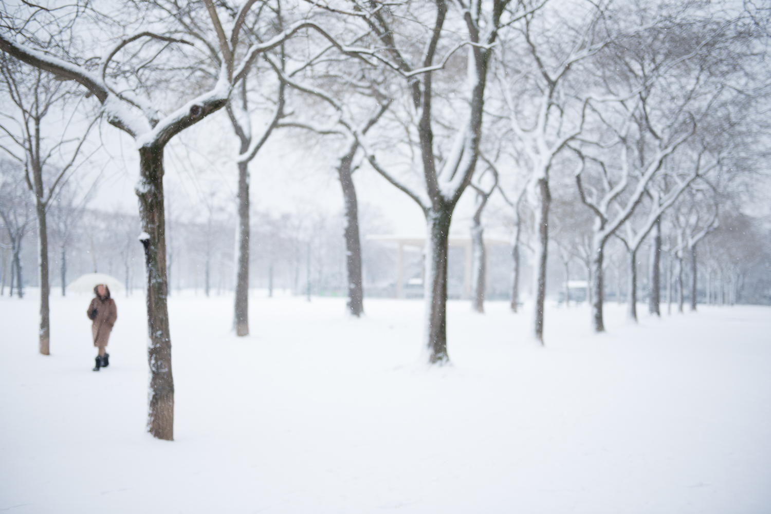 Blizzard in Paris - 8