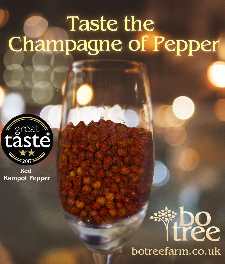 kampot pepper champagne of pepper