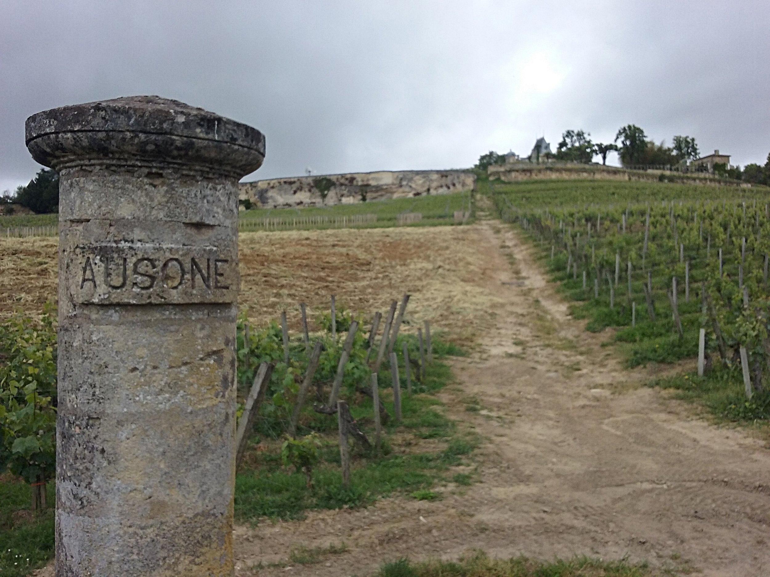 Vignoble de St Emilion