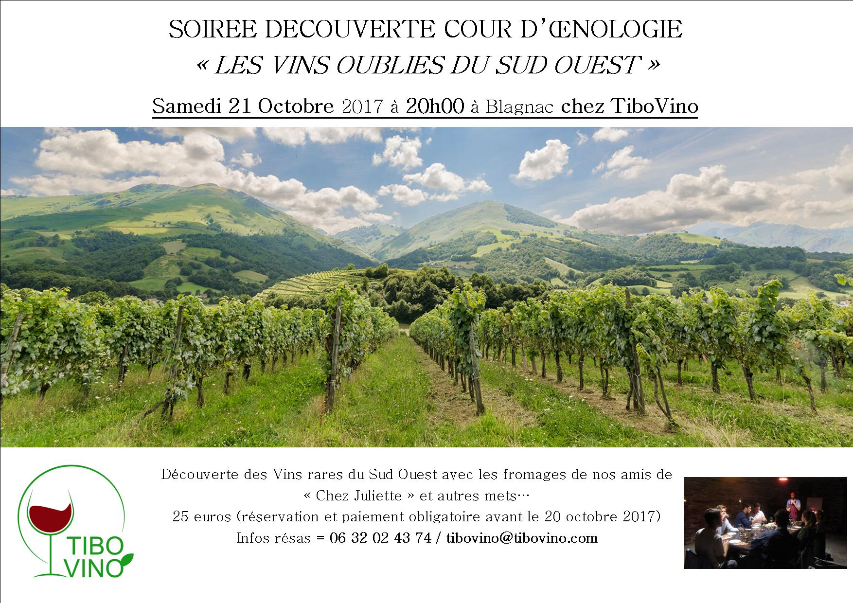 degustation-vin-cours-oenologie-toulouse-blagnac1.jpg