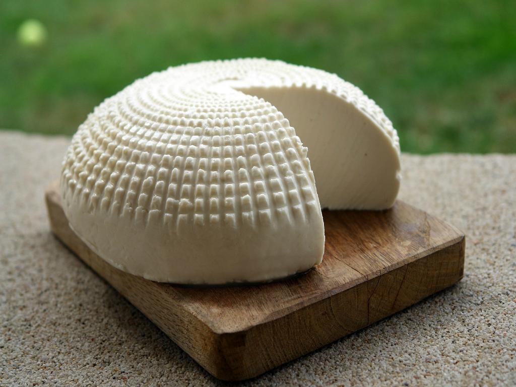 degustation-fromage-et-vin-toulouse2.jpg