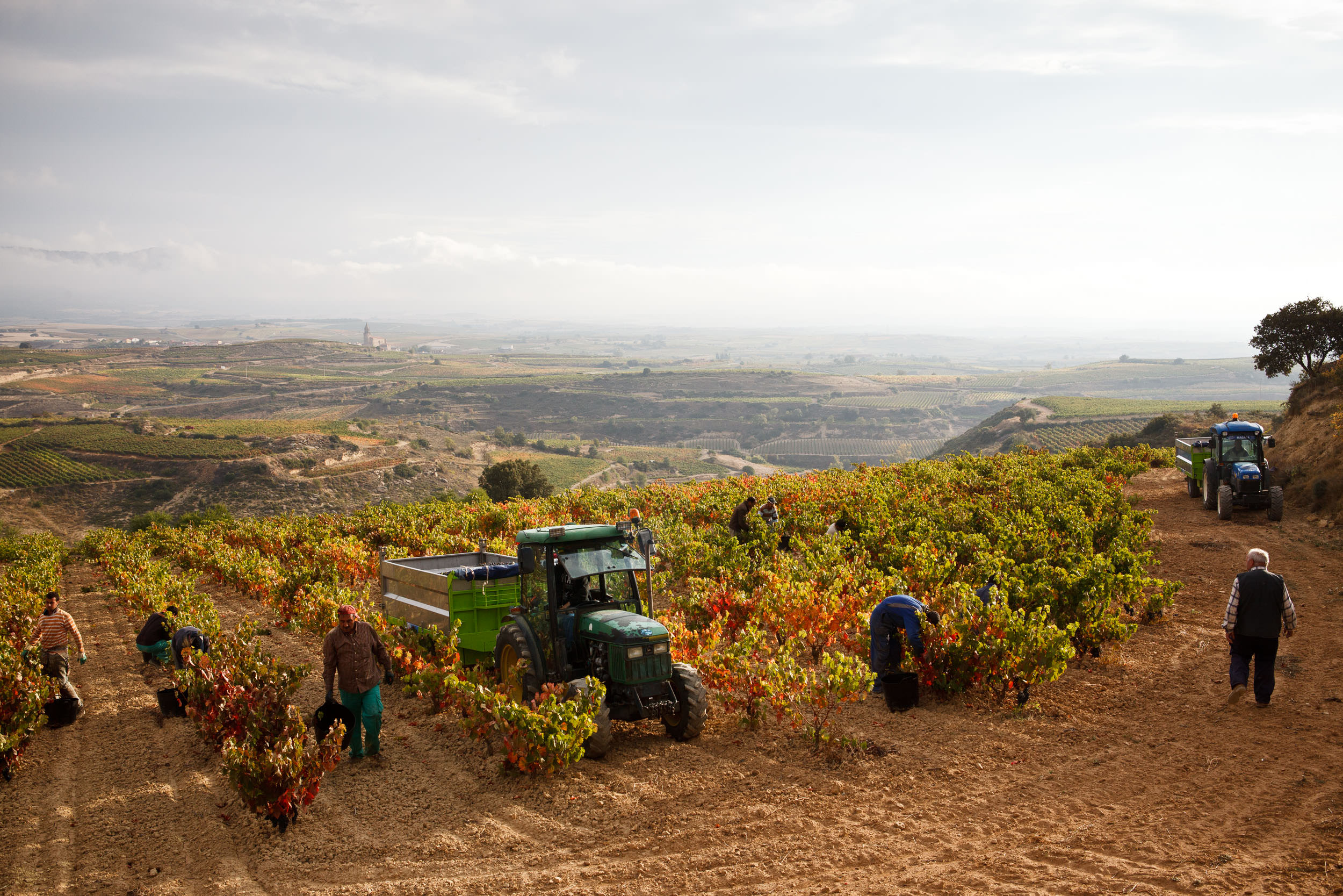 Professional Commercial Photography La Rioja Basque Country Spain - James Sturcke - sturcke.org_014.jpg