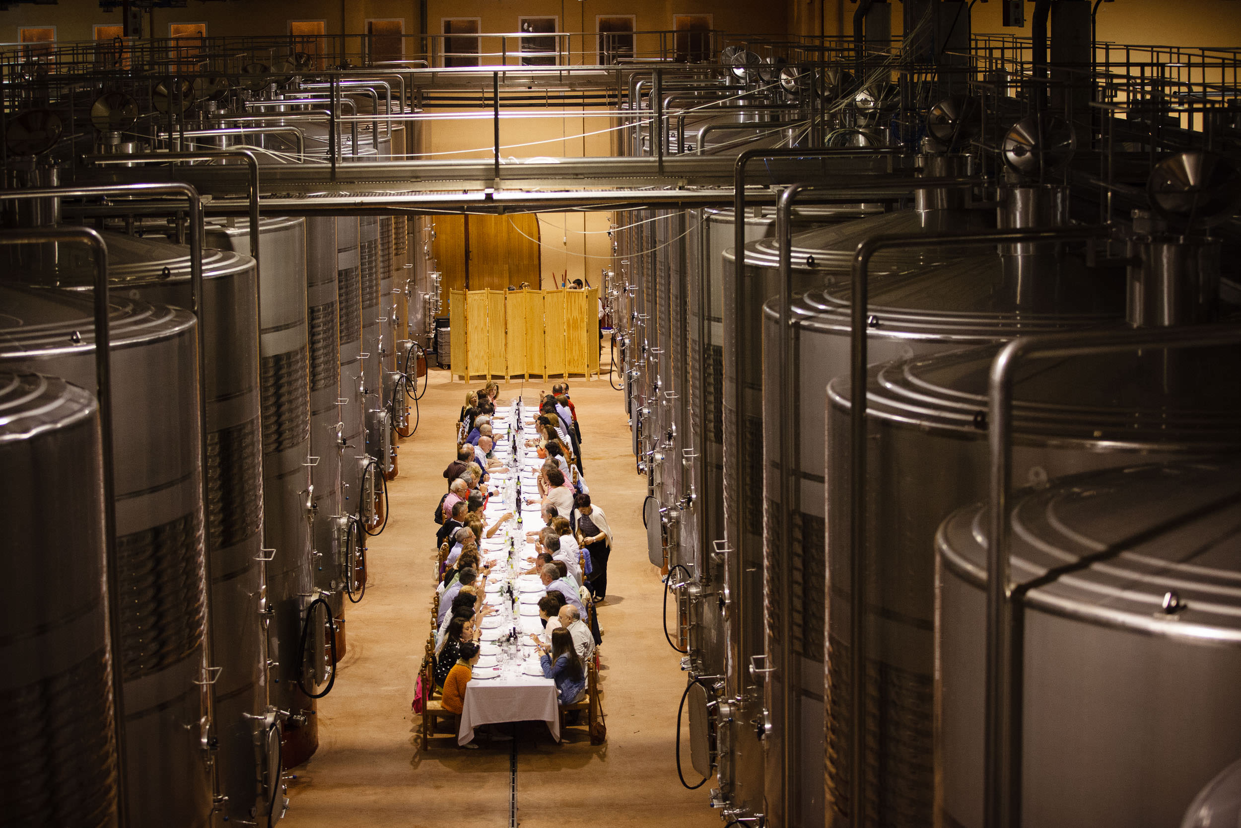 Fotografia Comercial de Vino La Rioja - Bodegas San Pedro Apostol Huercanos - James Sturcke Photographer | sturcke.org_004.jpg