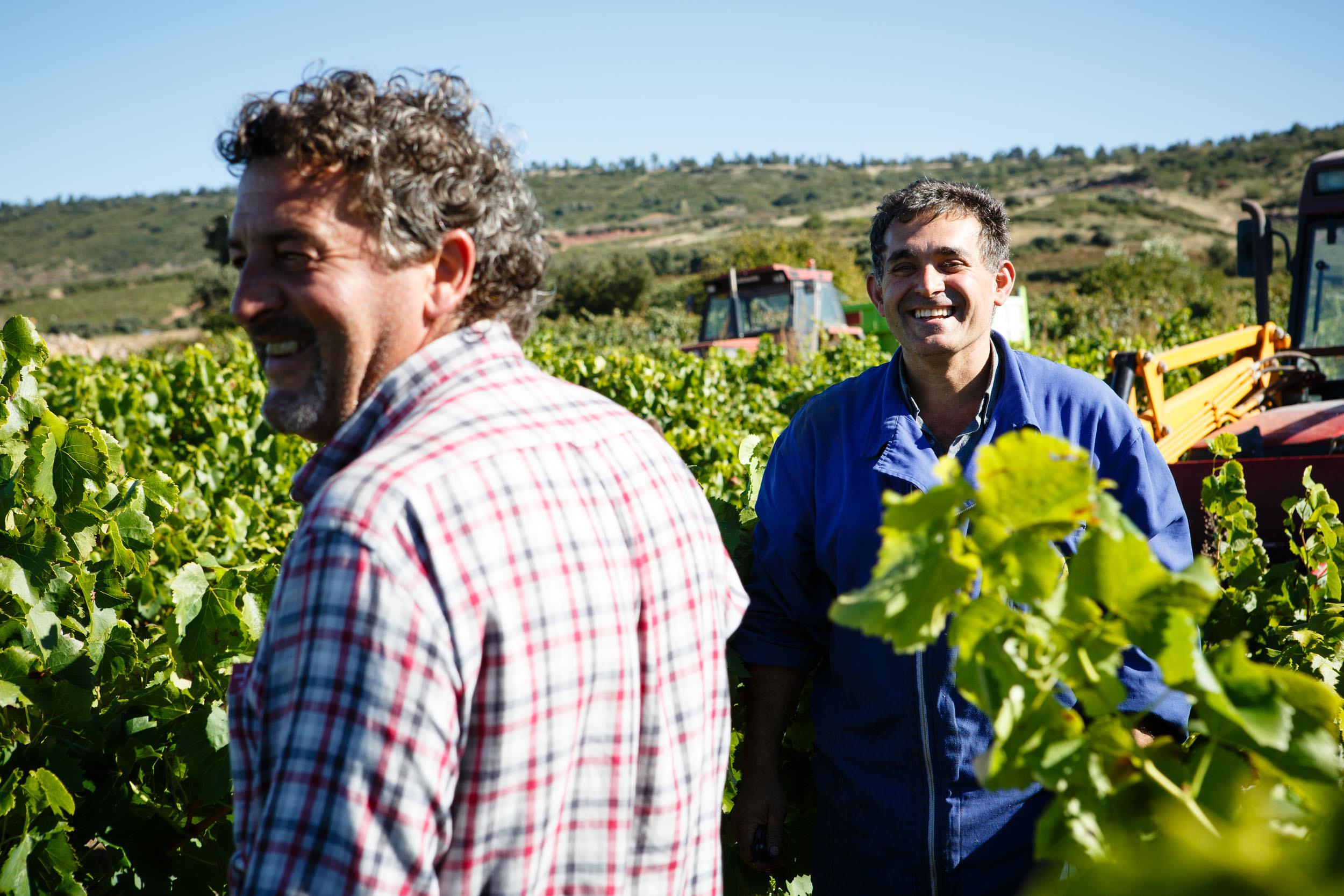 Fotografia Comercial de Vino La Rioja - Bodegas San Pedro Apostol Huercanos - James Sturcke Photographer | sturcke.org_009.jpg